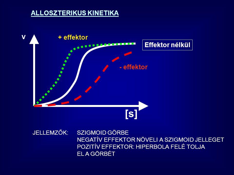 [s] ALLOSZTERIKUS KINETIKA + effektor Effektor nélkül - effektor V
